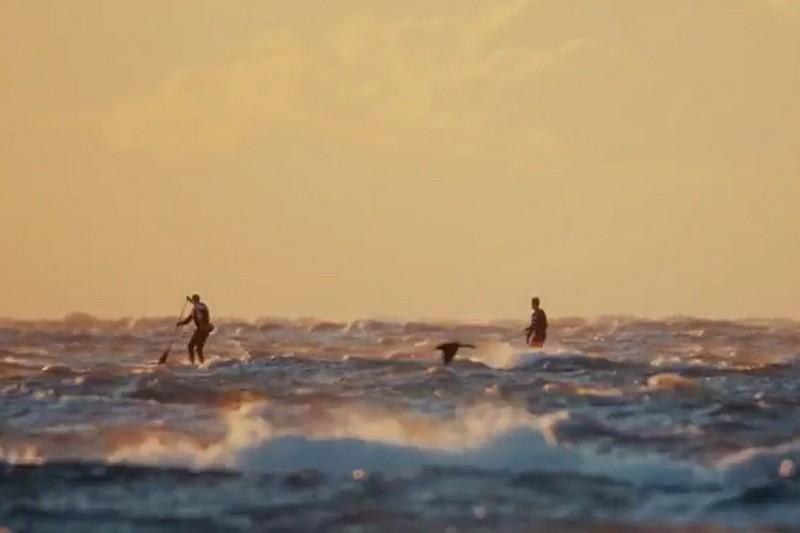Vidéo : Insane downwind