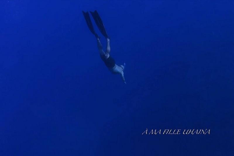 A-D-N - Waterman Life
