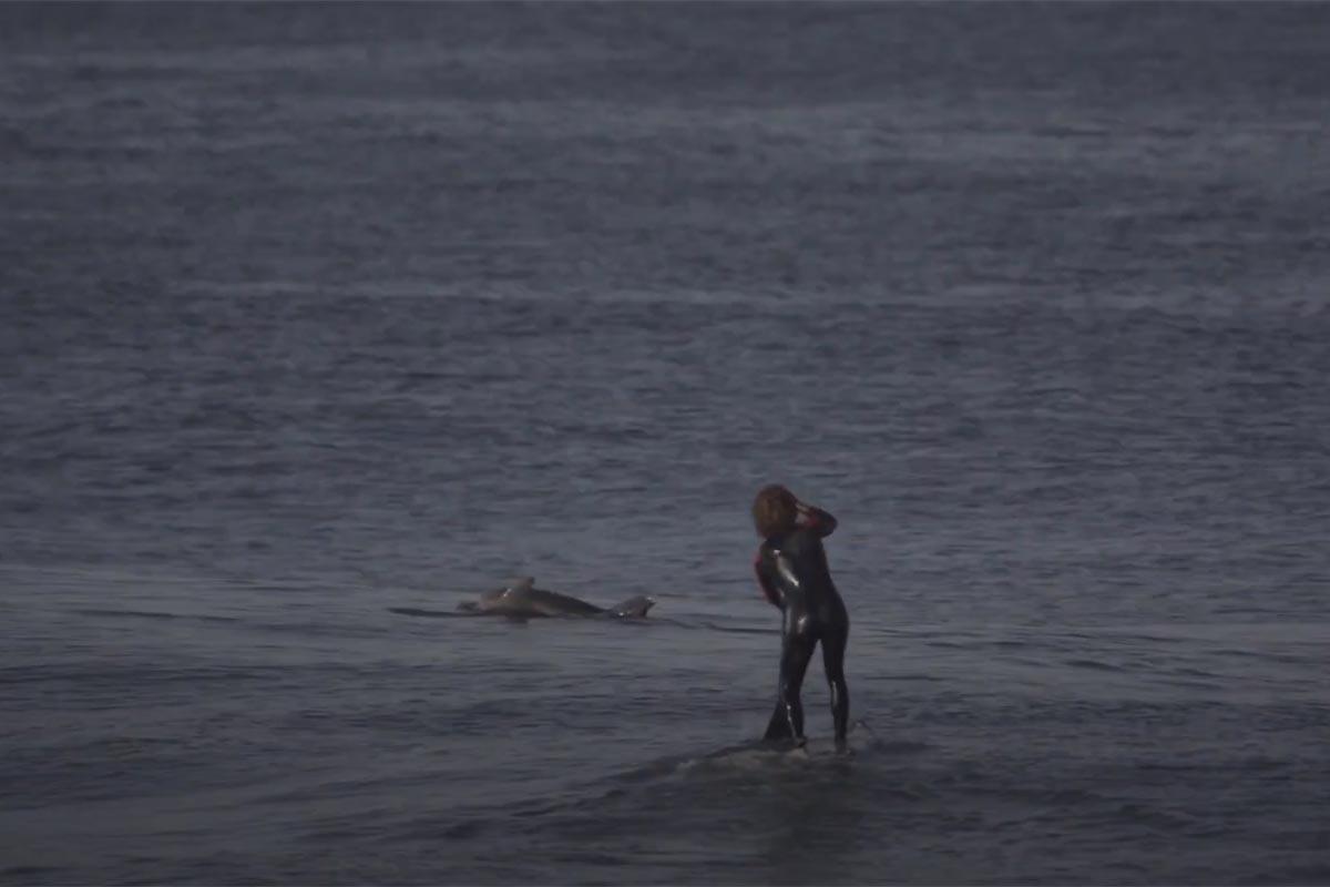 Anthony Maltese, de belles vagues et des dauphins