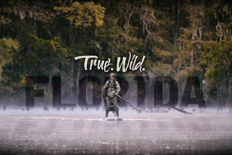 True. Wild. Florida.