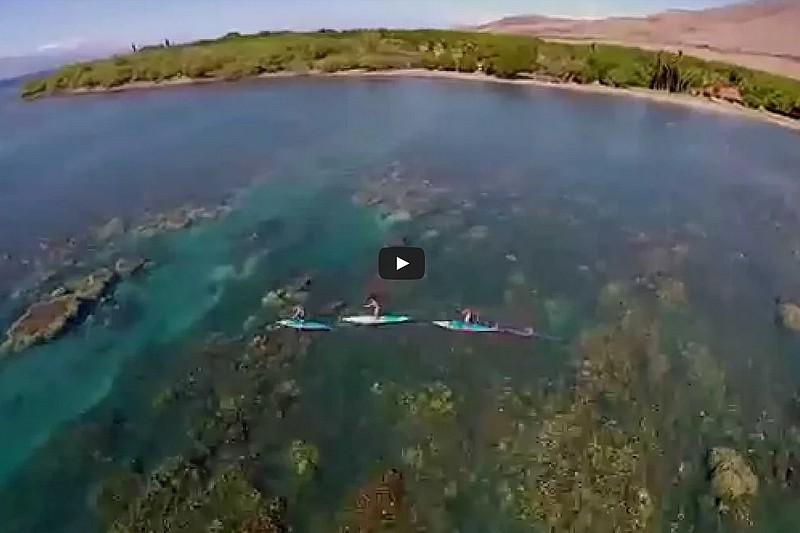 A Morning on Maui