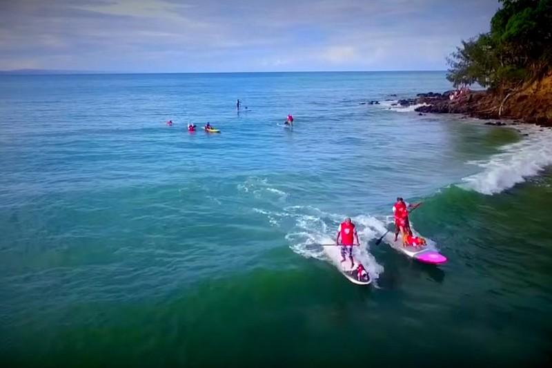 Vidéo : Du dog surfing à Noosa