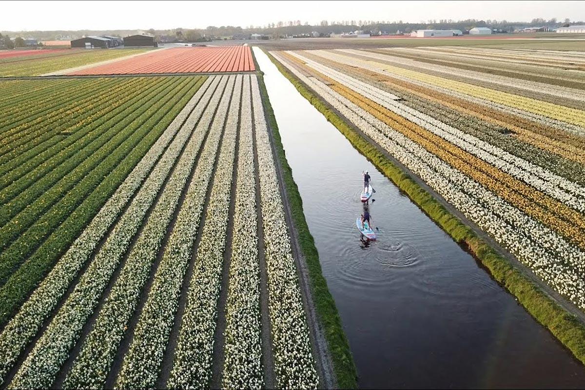 A la découverte des Pays-Bas
