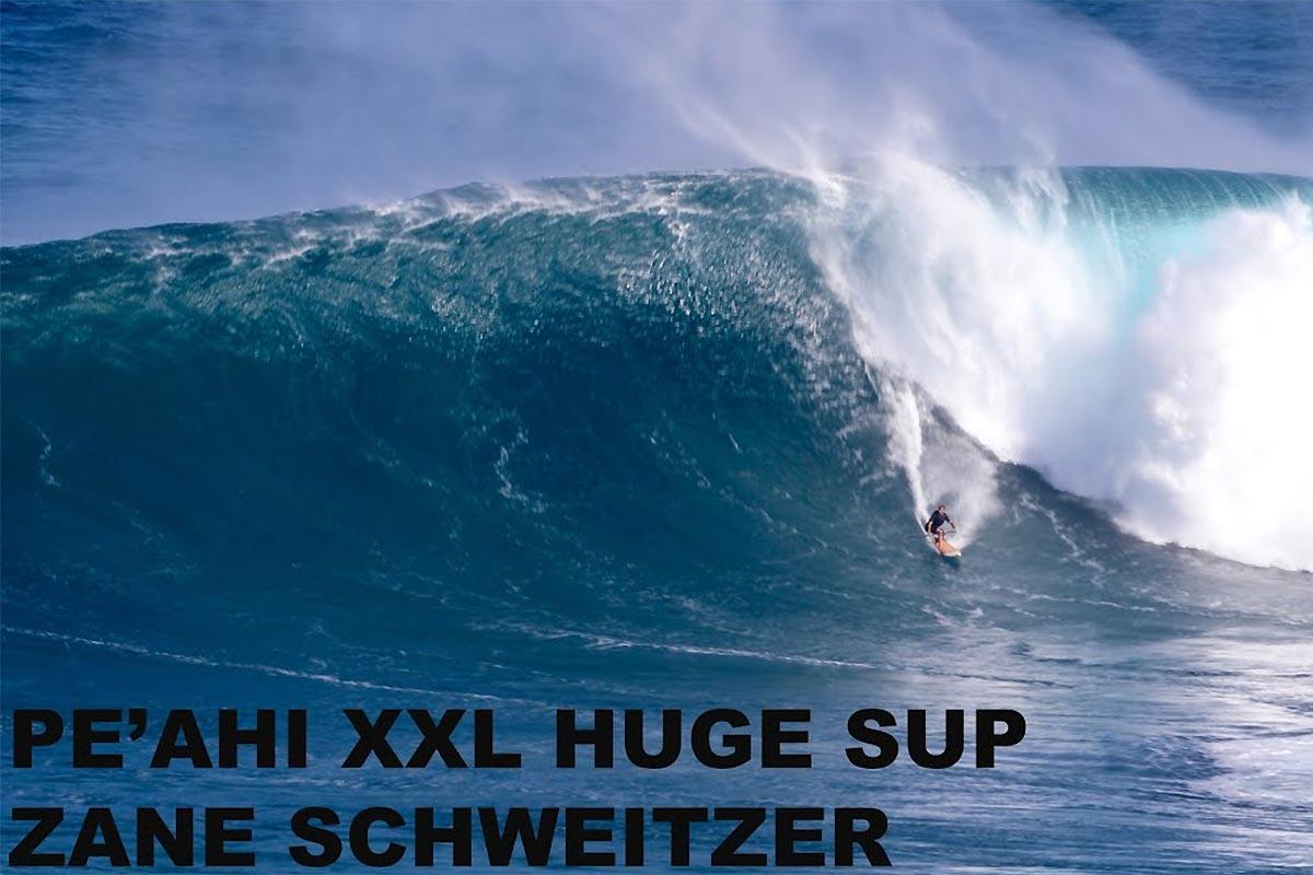Zane Schweitzer à Jaws